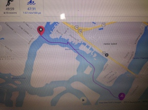 My Garmin's path of the race. Pretty close to my race plan minus the teeny little oopsie in there.