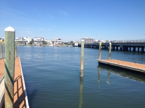 These are the piers the gulls were pointing from. There were a LOT in the 1.75 miles we swam on Wednesday!