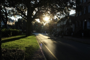 Gorgeous, beautiful morning in Savannah!