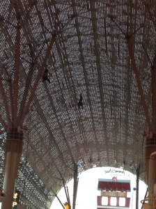 My sister and dad zip lining near the ceiling of Fremont Street.