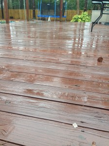 My back deck. Yuck.