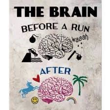 brain before after run