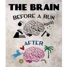 brain before after run